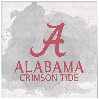 Alabama Crimson Tide Color Spill Mini Canvas Art