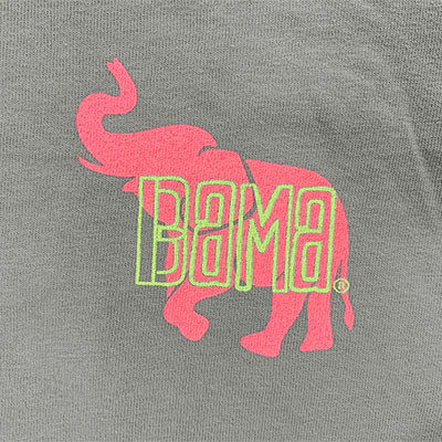 BRIGHT PICTURESQUE BAMA TUSCALOOSA T-SHIRT