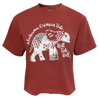 Alabama Crimson Tide Roll Tide Roll Abstract Pattern Cropped Comfort Color T-Shirt